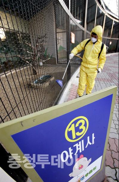 대전 동물원 방역 비상
