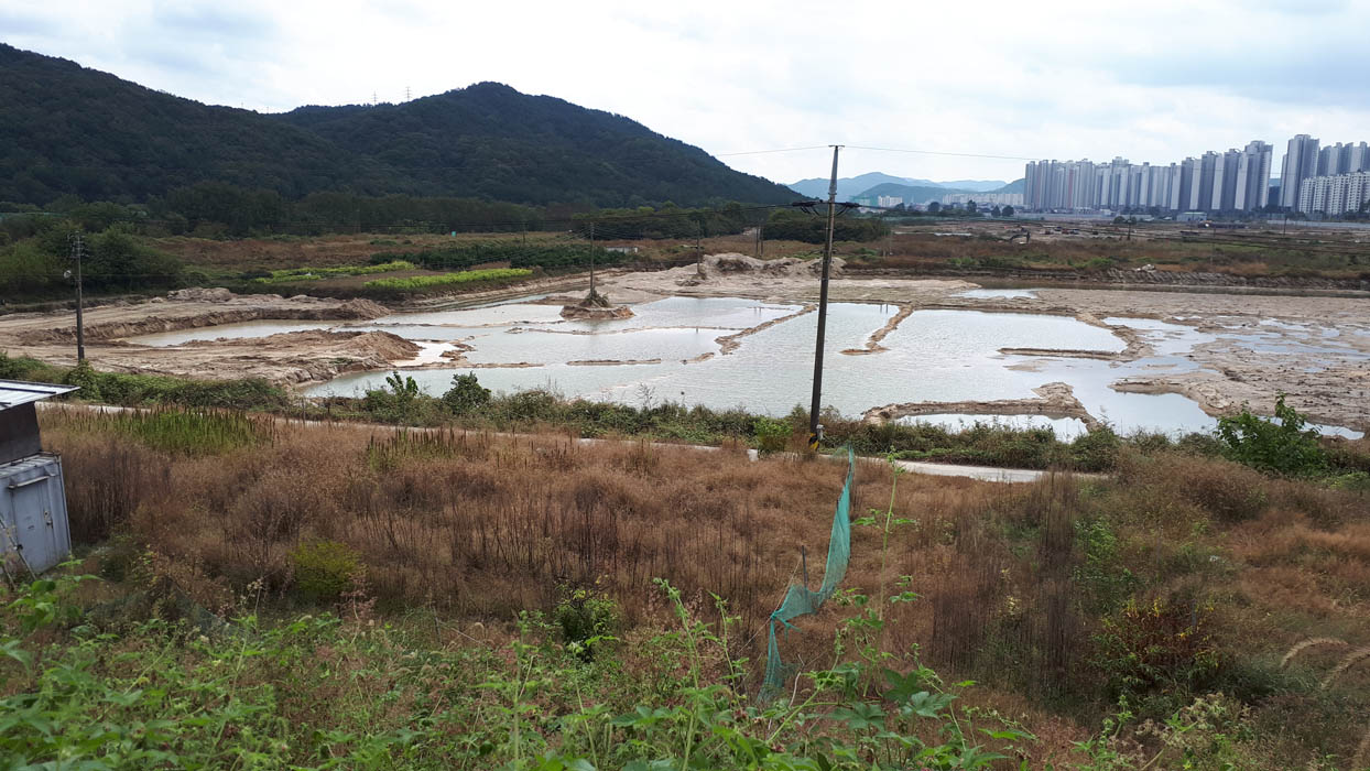 슬라이드뉴스2-도안호수공원.jpg