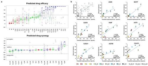 ▲ 컴퓨터시뮬레이션을 통한 암세포 유형별 약물 반응 예측과 세포실험 비교 검증 [KAIST 제공=연합뉴스]