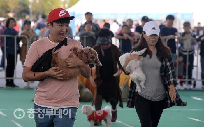 대전 '2018 동물보호 문화축제'