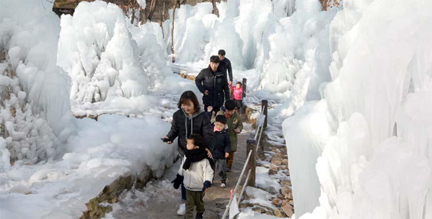 대전 동구 산림욕장…'여기가 겨울왕국'