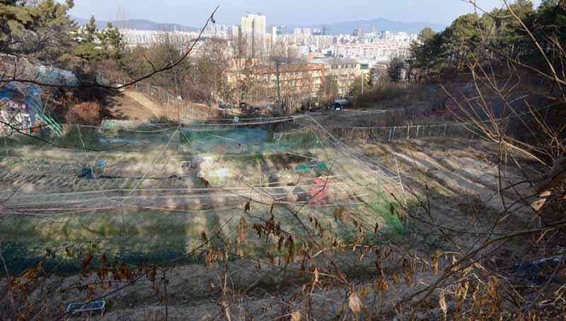 2018-12-26-대전-월평공원 훼손현장21.jpg