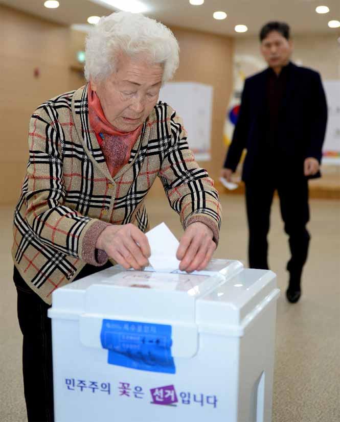 5면-조합장선거투표1.jpg
