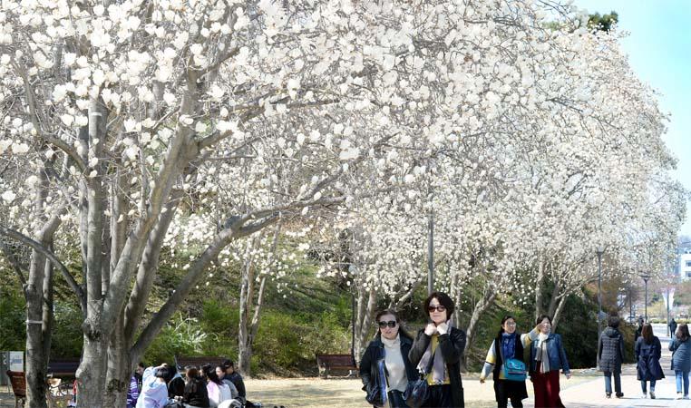 봄… 즐기세요!
