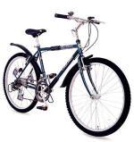 자동변속기어 자전거 개발