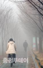 짙은 안개 뿌연 대전도심