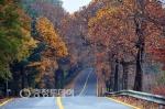 겨울로 가는 가을… 청남대는 풍경화