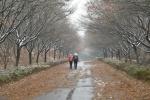 雪렌다, 가을과 겨울의 길목