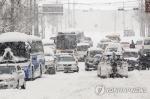 대낮 순식간에 30㎝'펑펑'·차량통제 불능…강원 영동 '마비'