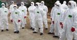 전쟁, 핵무기보다 무서운 바이러스