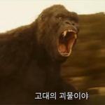 '콩: 스컬 아일랜드' 박스오피스 1위…해빙 3위로 한국영화 주춤
