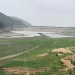 장맛비에도 충남 서북부 가뭄 해갈엔 역부족