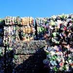 [충청로] 쓰레기와 인간쓰레기