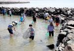 주말엔 조개잡고 갯벌체험… 여름휴가는 어촌에서 '퐁당'