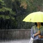 15일까지 도내 전역 최대 120㎜ 비 … 더위 꺾인다