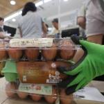 '살충제 계란 공포' 급속도 확산