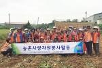 충북농촌사랑봉사단, 청주 가곡3구서 고구마 수확 일손돕기