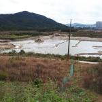 도안호수공원 3블록 아파트 빠르면 내년 3월 분양 예정