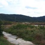 도안호수공원 조성사업 사전공사 타당성 논란
