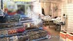 보령서 생선회 먹은 일가족 6명 식중독 증세로 입원
