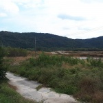 도안호수공원 사전공사 중단… 원안추진 떠올라