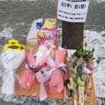 """[르포] """"아가야, 교통사고 지켜주지 못해 미안해""""…대전 서구 한 아파트 '추모 물결'"""