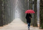 """대전세종충남 오전까지 약한 빗방울…""""낮에 그칠 듯"""""""