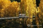 뉴질랜드 관광수입 '짭짤'…외국인 여행객 작년 8조4천억원 지출