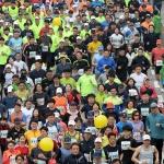 [2018 물사랑 대청호 마라톤대회] 여러분 모두…'백만불짜리 다리'