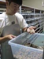 옥천군 미래 슈퍼푸드 식용곤충 산업 키운다