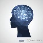 """""""음악인·외국어 구사자 뇌 활용 더 효율적"""""""