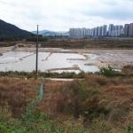 도안호수공원 3블럭 광풍 전망… 청약통장 가입자 대다수 1순위