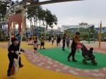 증평 미루나무숲 '그린시티 스카이파크' 인기
