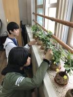 송호경 세천초 교장, 꿈·사랑·행복을 키워가는 학교
