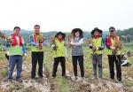 농협 충북지역본부, 마늘수확 일손돕기