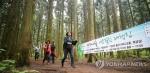 숲길 걸으며 피로 푸세요…사려니숲 에코힐링 체험행사