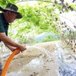 폭염·가뭄피해 늘기만…충남 농작물 피해면적 급증