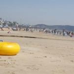 여름특수 어디로…충남 해수욕장 '텅텅' 장사 죽쒔다