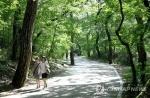 무더위 꺾였지만…충북 유명산·유원지 다소 한산