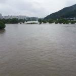 대전·충남 밤 사이 최고 157.5㎜ 비 피해 속출… 갑천 유등천 한때 범람 위기