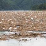 집중호우 쓰레기 집합소 대청호…수거 비용 7억원