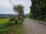 추석 앞둔 홍성군 훈훈함 가득…주민들 마을대청소·무연분묘 벌초