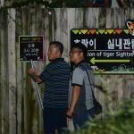 <3보> 대전오월드 탈출 퓨마, 마취총 맞고도 1시간여 넘게 대치 중