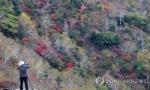청명한 휴일…충북 유명 산·유원지 행락객 발길