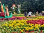 청원생명축제 농산물 대잔치…열흘간 대장정 돌입