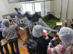 충북친환경채소클러스터사업단 '그린 투어'