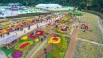 '친환경 한마당' 청원생명축제 50만명 즐겼다