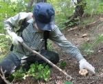 괴산 청천 버섯 유통 중심지로 우뚝…버섯랜드 내달 완공