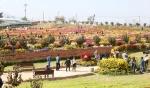 국화축제 개막 '서산…가을국화에 물들다'
