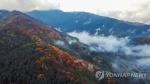 [길따라 멋따라] 단풍, 잣 향기에 빠진 '축령산'의 가을…피톤치드 트래킹